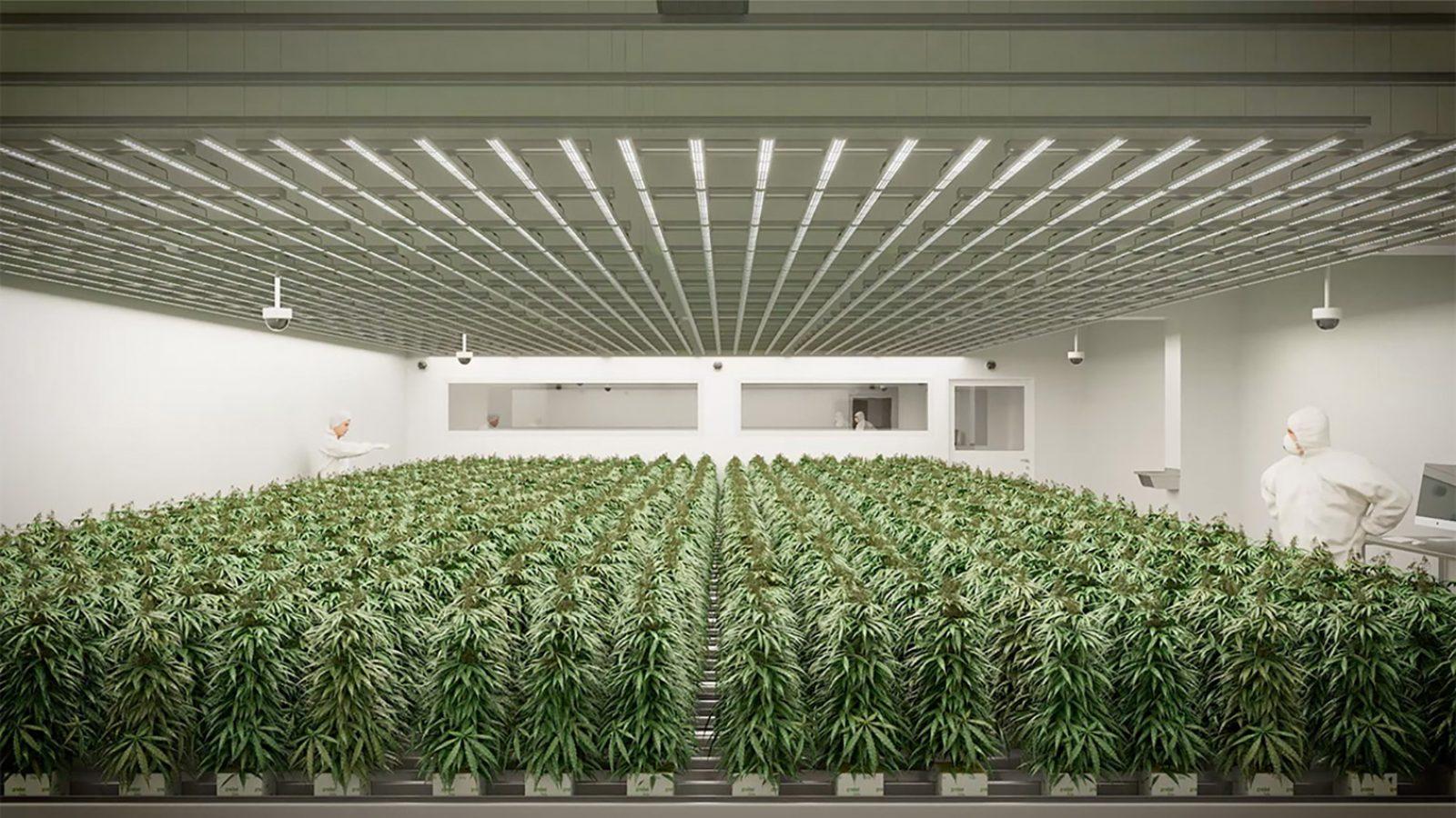 Bild vom Panel – Kiffen gegen Krebs? – Cannabis in der Krebstherapie – von der Krebs-Convention YES!CON von yeswecan!cer mit Uta Melle, Jan Witte, Conny Mager, Prof. Dr. Martin Glas und Bianca Nawrath